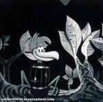 BW Alice Birdcage