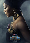 Black Panther Character Posters 01