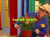 Captain Terrific