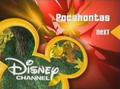 DisneyLeavesRed2003
