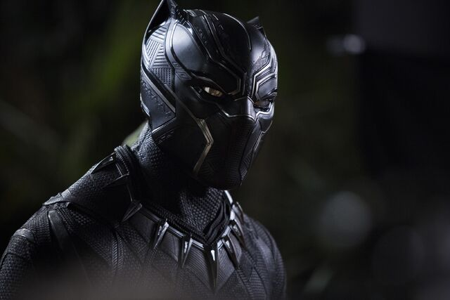 File:Black Panther photography 1.jpg