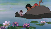 Mowgli and Baloo the bear are both relaxing on the river