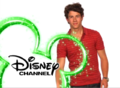 Nick Jonas (September 3, 2010 - May 22, 2014)