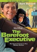The Barefoot Executive - DVD