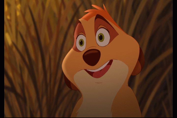 Timon S Mother Disney Wiki Fandom Powered By Wikia