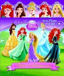 Disney-Princess-Books-with-Merida-disney-princess-34420075-419-500
