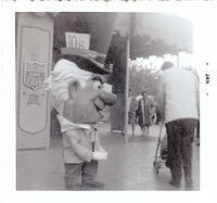 Disneyland mad hatter fantasy fair photograph 640