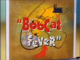 Bobcat Fever