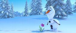 Olaf lächelt eine Blume an