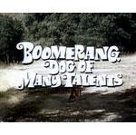 G boomerang-dog-of-many-talents-dvd-disney-rare-c3886