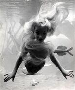 Submarine Voyage Mermaid Figure