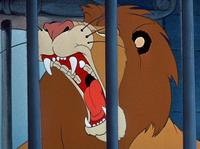 León Dumbo