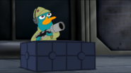 Perrywithgun