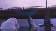FD Screenshot Otters beklimmen brug