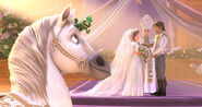 Tangled Ever After Promotional