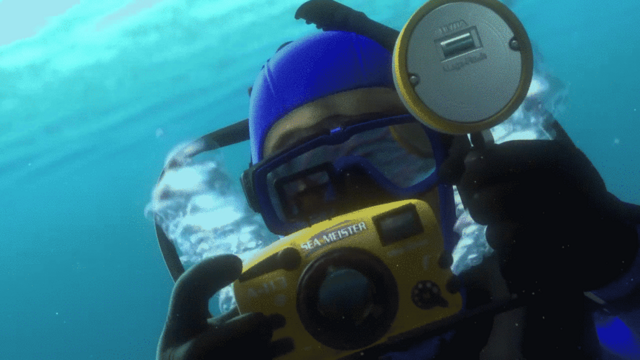 File:A113 Finding Nemo.png