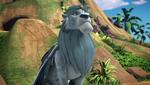 Chief Zephyr
