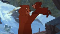 Bear2-disneyscreencaps com-102