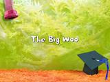 The Big Woo