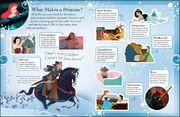 Disney Princess - What Makes a Princess?