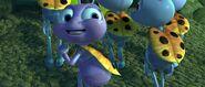 Bugs-life-disneyscreencaps.com-5387