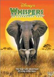 Whispers an Elephant Tale