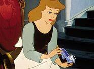 Cinderella Holding the Glass Slipper
