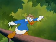 Donald Duck - Out On A Limb 195020