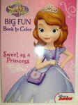 Big Fun Book to Color 3