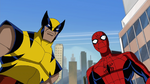 Wolverine&Spiderman