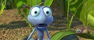 Bugs-life-disneyscreencaps.com-4622
