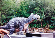 Discovery River Iguanodon