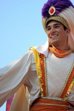 Disney Park Aladdin