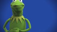 Muppets-com23