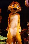 Timon HKDL lion king show