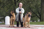 Barsinsiter with his German Shepherds