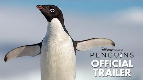 Disneynature's Penguins Official Trailer