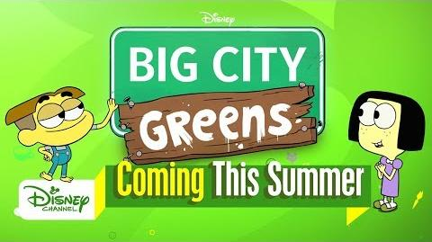 Meet the Greens Big City Greens Disney Channel