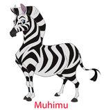 Muhimu-973x1024