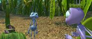 Bugs-life-disneyscreencaps.com-4650