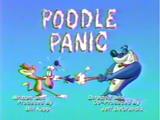 Poodle Panic