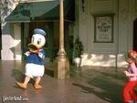 Wdstory duck1974ww