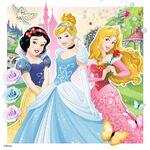 Disney-Princesses-disney-princess-39241463-1024-1024
