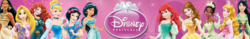 DisneyPrincessReporter