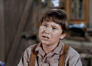 Kevin from Old Yeller