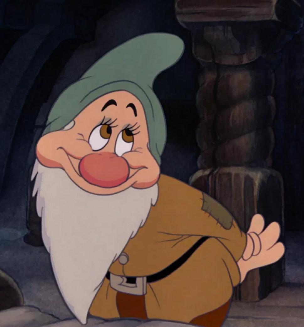 Costume Shoe Covers Peter Pan Elf Seven Dwarfs