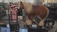 Belle Phillipe Animatronic BTS