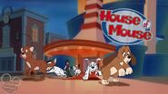 House Of Mousedogsandcats3