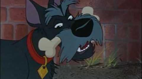 Jock's Song - Lady and the Tramp - Dutch