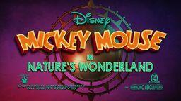 Nature's Wonderland Mickey (1)